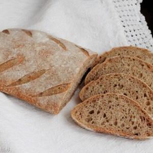 Pane con farina integrale Petra 9