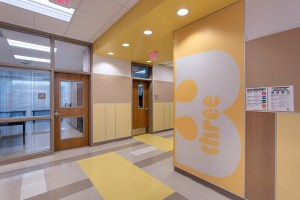 Carver Elementary School - Wall Panel System