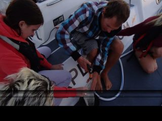Olivia and Deckhand Mitch Mclean work up their first manta trawl sample on deck.