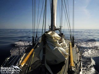 sea dragon sailing bermuda