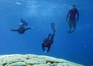 Woods Hole Oceanographic institute