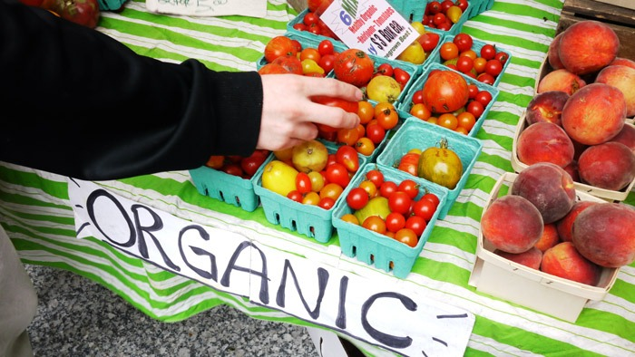 pangan-organik2