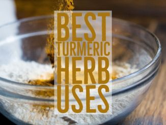 Best Turmeric Herb Uses