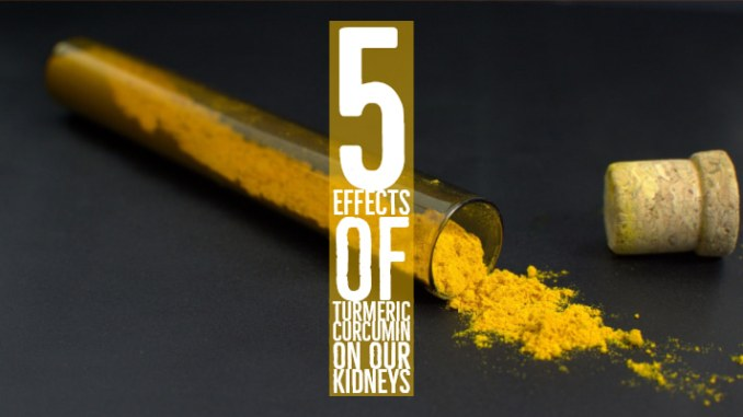 Effects Of Turmeric Curcumin On Our Kidneys