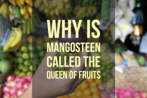 Why Is Mangosteen Called The Queen Of Fruits