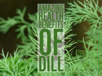 Amazing Health Benefits Dill