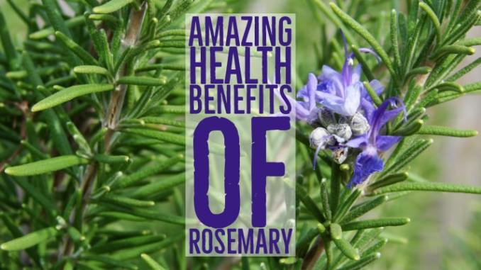 Amazing Health Benefits Rosemary