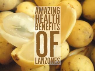 Amazing Health Benefits Lanzones