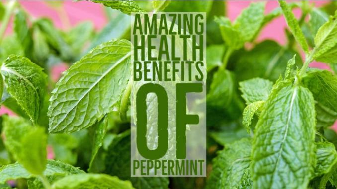 Amazing Health Benefits Peppermint