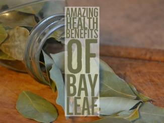 Amazing Health Benefits Bay Leaf