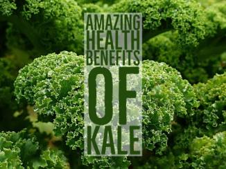 Amazing Health Benefits Kale