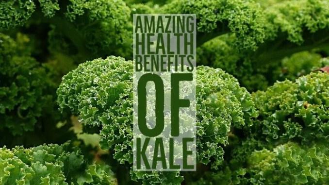 Amazing Health Benefits Kale