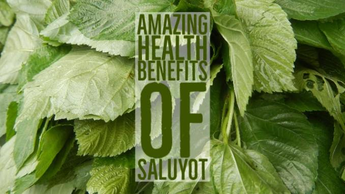 Amazing Health Benefits Saluyot