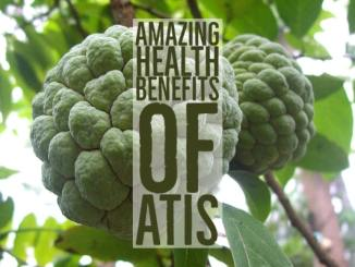 Amazing Health Benefits Atis