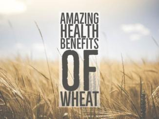 Amazing Health Benefits Wheat