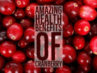 Amazing Health Benefits Cranberry