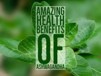 Amazing Health Benefits Ashwagandha