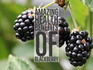 Amazing Health Benefits Blackberry
