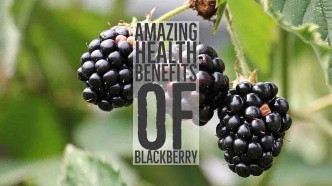 Amazing Health Benefits Blackberry