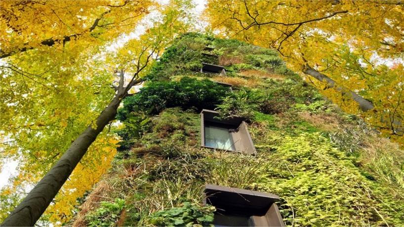 oasis-treescaper-urban-community