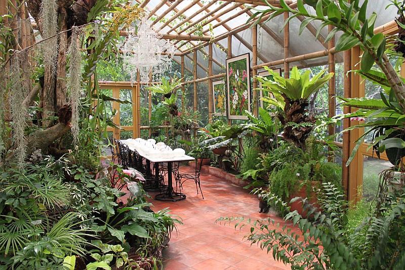The philippine tarsier botanical garden panglao bohol philippines