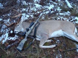 Sam's 2012 Idaho Whitetail