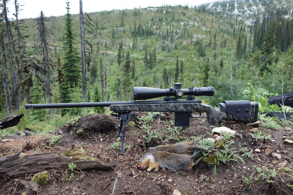 560-yard-g-squirrel-double-260-terminator