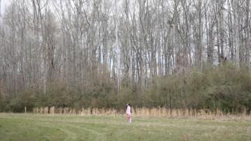 Still from The Stranger, 2013