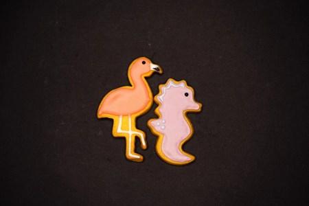 biscotti animale panificio grazioli