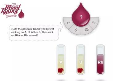 typowanie grup krwi