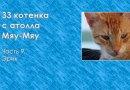 33 котенка с атолла Мяу-Мяу. Часть 9. Эрик