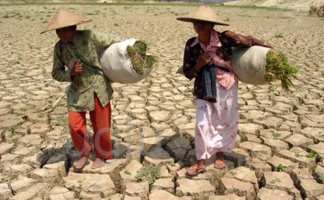 wanita petani