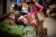 Kowloon- Flower Market