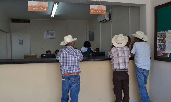 Foto: Siglo de Torreón