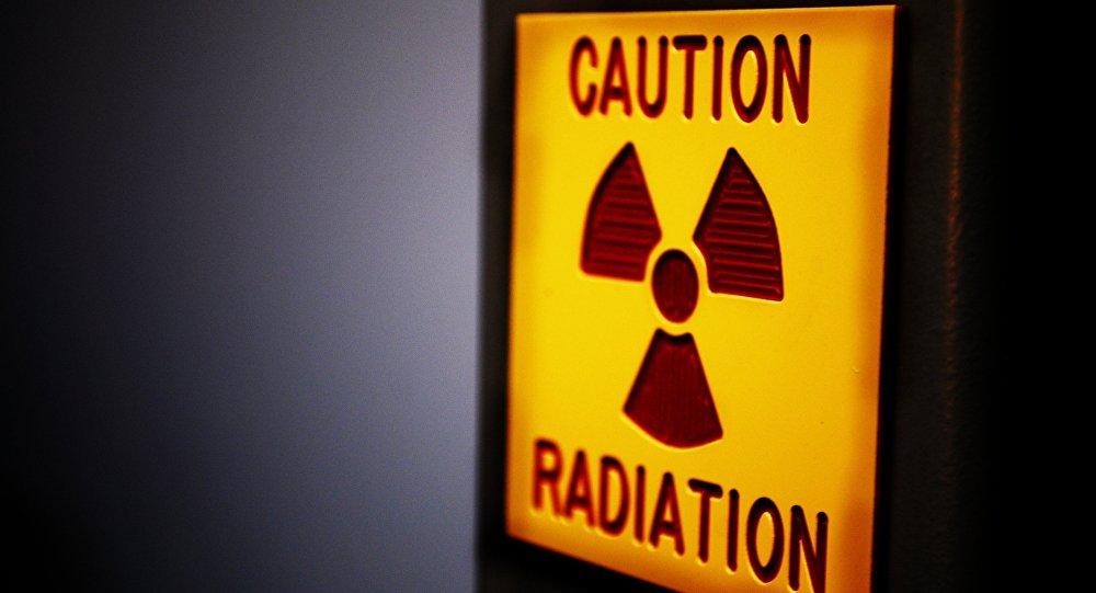Un hongo mutante de Chernóbil se alimenta de la radiación y la convierte en energía