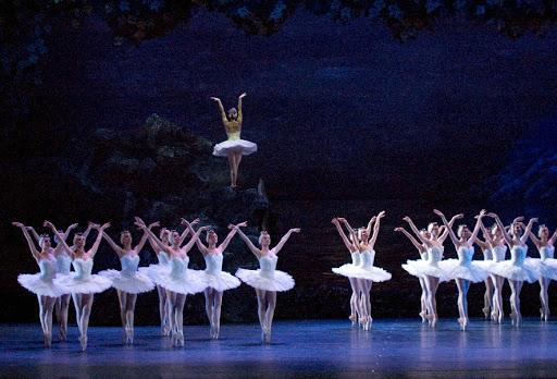 El Teatro Colón de Argentina dará gratis el ballet El lago de los Cisnes