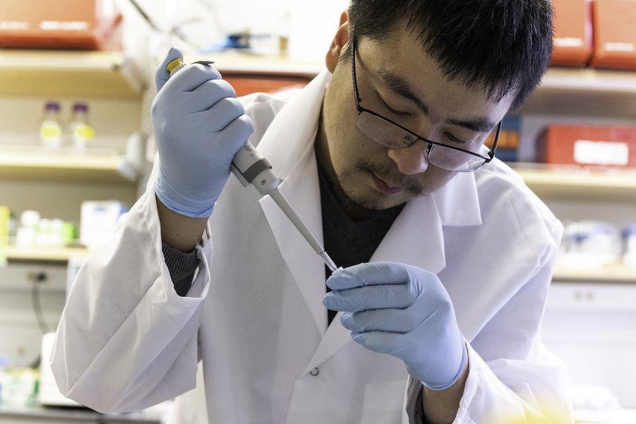 #Alerta Argentina autorizó a realizar ensayos clínicos de una vacuna china contra el coronavirus