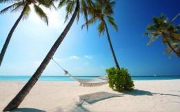 maldives-indian-ocean-tropics-palm-beach-ocean-hammock-blue-sky-sand-nature
