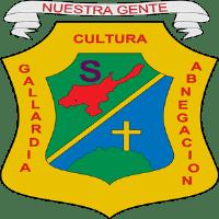 Mejor Alcalde del Tolima 60