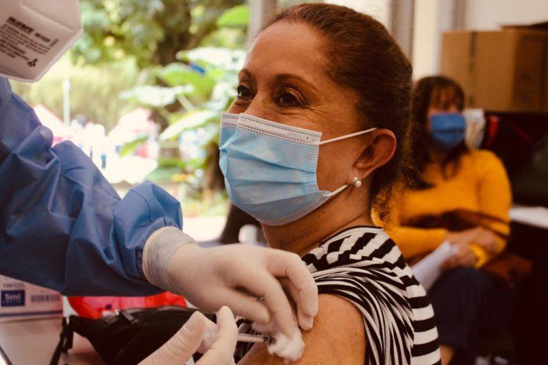 Ibagué implementó 'Pico y cédula' para jornada de vacunación de adultos mayores de 65 años. 1