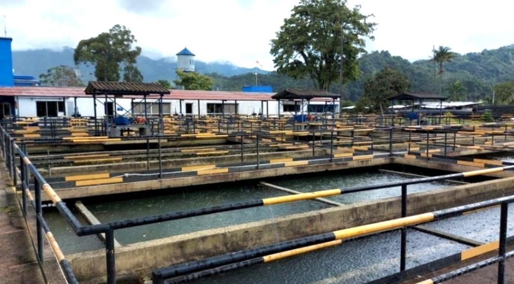 Continúan los problemas con el servicio de agua en Ibagué. 1