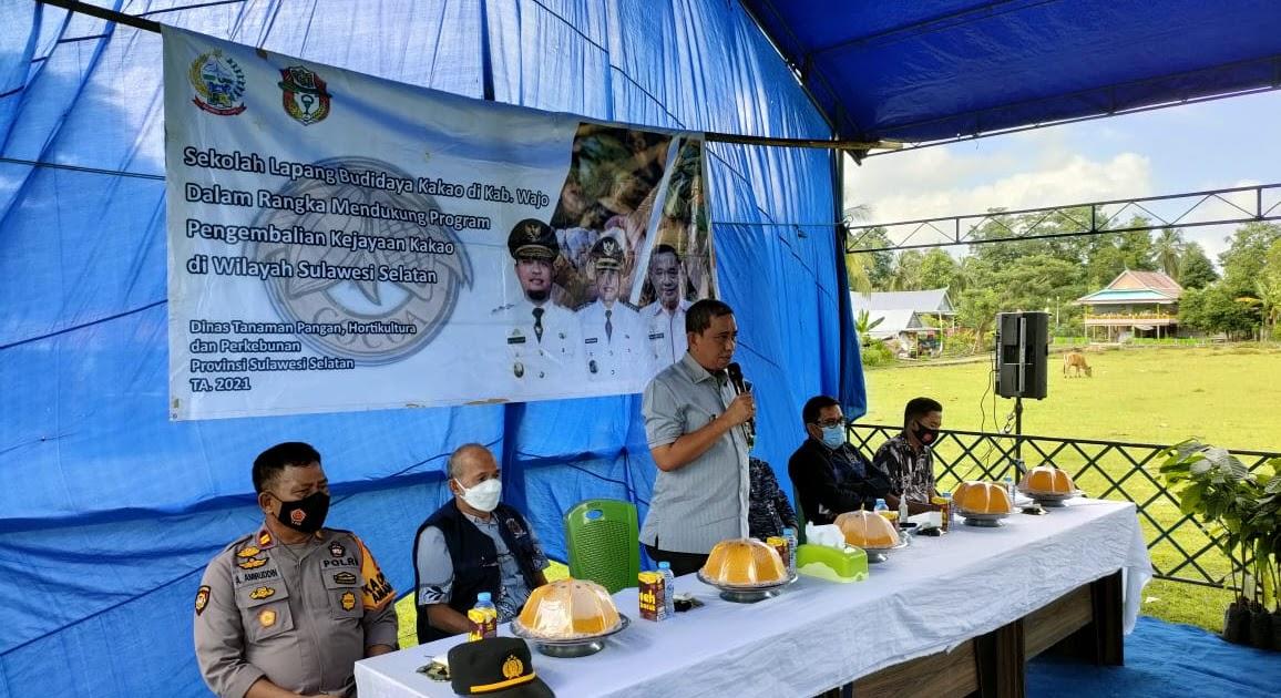 Amran Mahmud Harap Wajo Jadi Tempat Berlajar Pengembangan Kakao