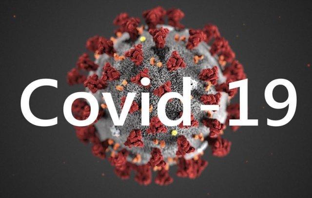 По состоянию на 22 мая 339 подтвержденных случаев инфекции COVID-19 в ДНР