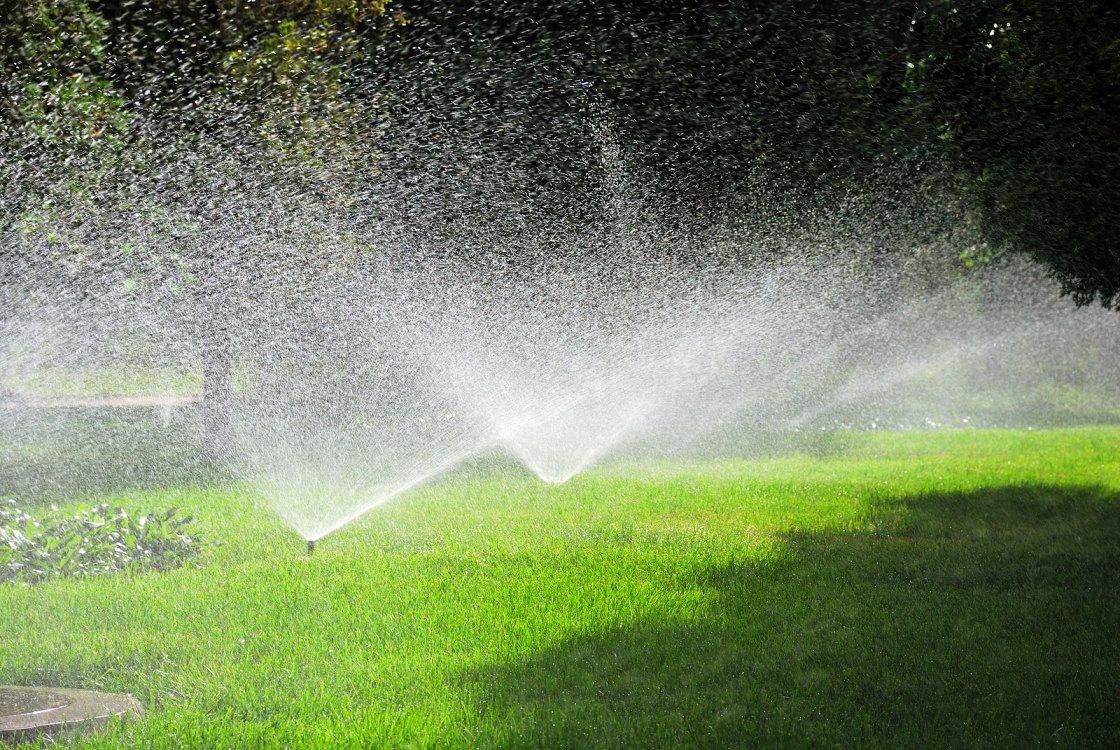 spring sprinklers watering the lawn