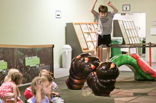 20110817 Butterfly Pavilion 35