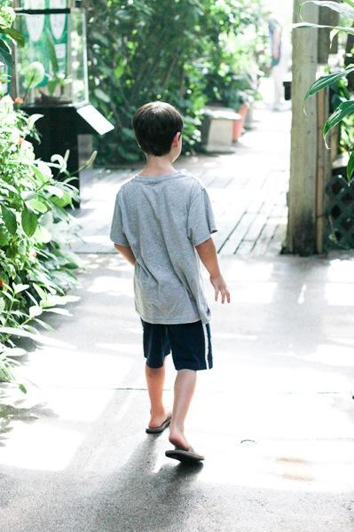 20110817 Butterfly Pavilion 8