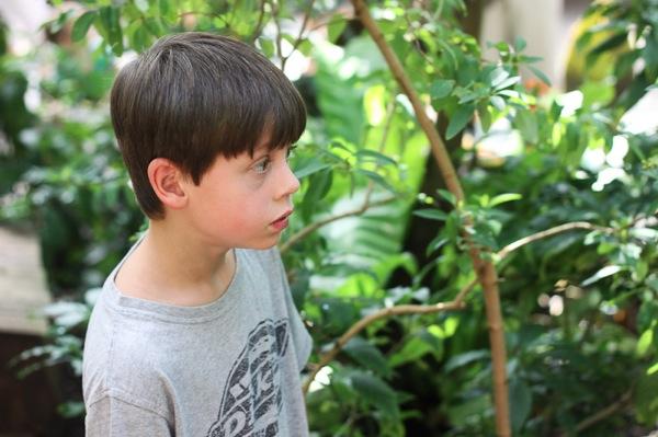 20110817 Butterfly Pavilion 9