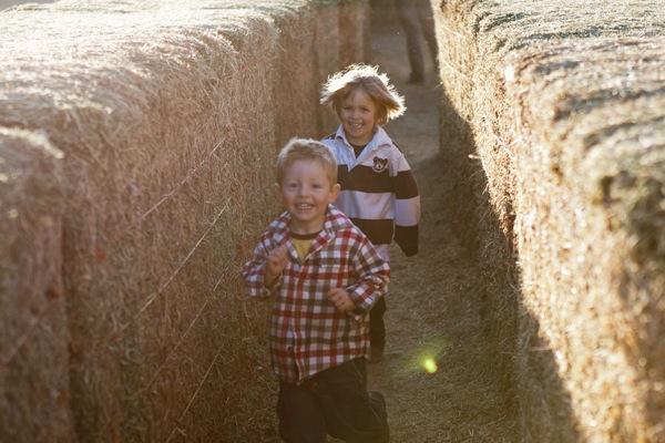 20111007 1007 Anderson Farms 126
