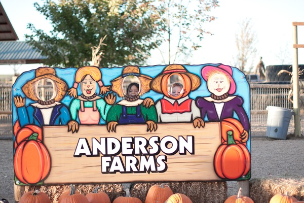 20111007 1007 Anderson Farms 169