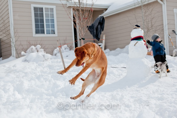 20120204 0204 Snowman 131